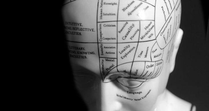 psicologa torino