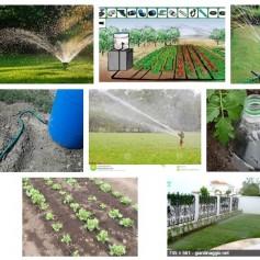 Irrigazione da giardino