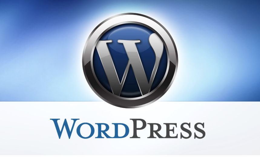 bug in un sito WordPress